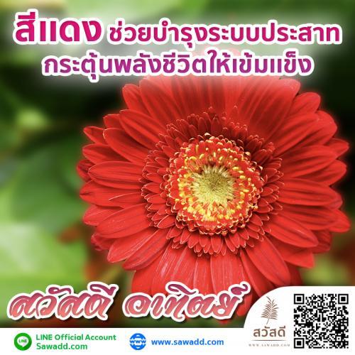 สวัสดี สวัสดีวันอาทิตย์ดอกไม้ sawadd 001
